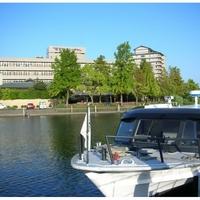 京近江の写真