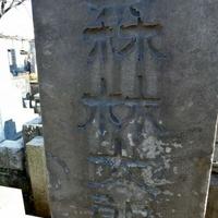 禅林寺の写真