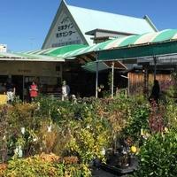 日本ライン花木センターの写真