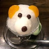 博多弁天堂 ららぽーと豊洲店の写真
