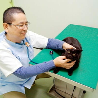 ヨネダ動物病院の写真