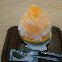 恵那川上屋咲久舎 可児御嵩インター店の写真