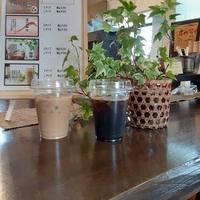 珈琲豆と雑貨の店 和の写真