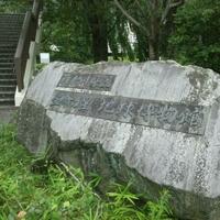 神奈川県立生命の星・地球博物館の写真