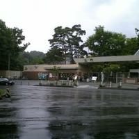 札幌市円山動物園の写真