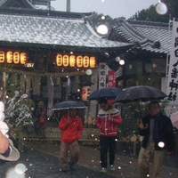 隅田八幡神社の写真
