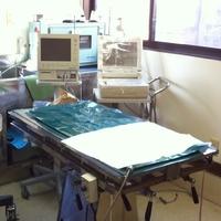 松田動物病院の写真