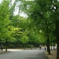 大阪城公園の写真