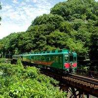南海電鉄「こうや花鉄道 天空」の写真