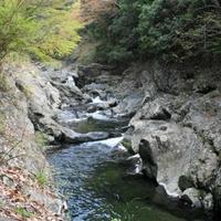 玉川峡の写真