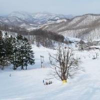 さっぽろばんけいスキー場の写真
