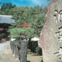 洞雲寺の写真