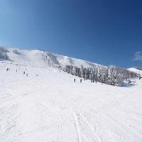 ハチ北高原スキー場の写真