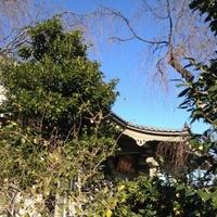 善福寺の写真