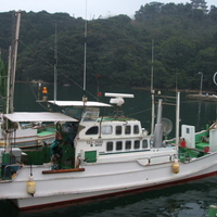 日和佐港-釣船 「勝丸」の写真