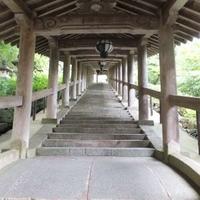 長谷寺の写真