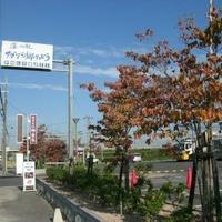道の駅アグリの郷栗東の写真