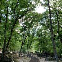 丸森町不動尊公園キャンプ場の写真
