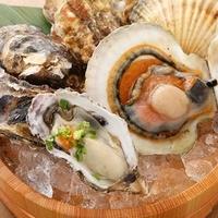 本日のセリ買い鮮魚 大魚(おおうお)の写真