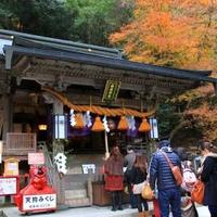 由岐神社の写真
