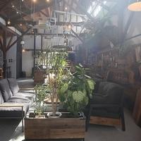 Baum Coffee Standの写真