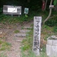 青森市浅虫温泉森林公園の写真