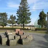 大垣市役所スポーツ施設 赤坂スポーツ公園の写真