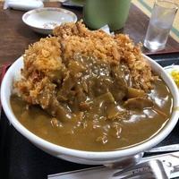嵯峨野の写真