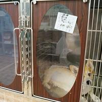 草津犬猫病院の写真