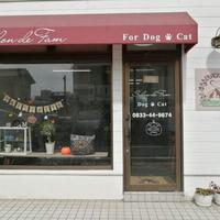 ドッグサロンファム 光店(ホテル)の写真