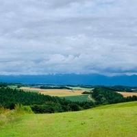 四季の風の写真