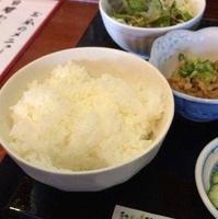 天ぷら割烹 葉月の写真