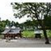 日向国一之宮都農神社の写真