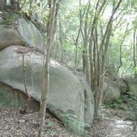 肥前・大和巨石パークの写真