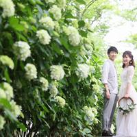 写真館スタジオエース 高松店の写真