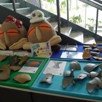 高知県立埋蔵文化財センターの写真