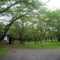 臼杵公園の写真