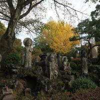 明治寺の写真