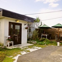 Cafe' PIPINEOの写真