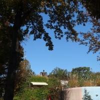 三鷹の森ジブリ美術館の写真