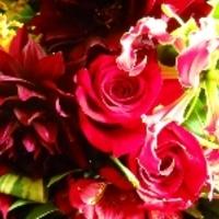 有限会社花の店小森の写真