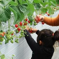 志摩自然学校の写真